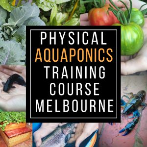 Physical Aquaponics Training course Melbourne